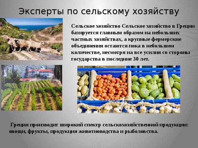 Эксперты по сельскому хозяйству  Греция производит широкий спектр сельскохозяйственной продукции: овощи, фрукты, продукция животноводства и рыболовства. Сельское хозяйство Сельское хозяйство в Греции базируется главным образом на небольших частных хозяйствах, а крупные фермерские объединения остаются пока в небольшом количестве, несмотря на все усилия со стороны государства в последние 30 лет.