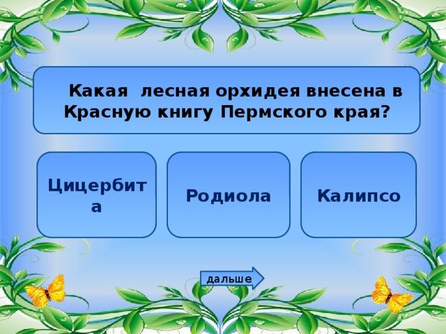 Какая лесная орхидея внесена в Красную книгу Пермского края? Цицербита Родиола Калипсо дальше