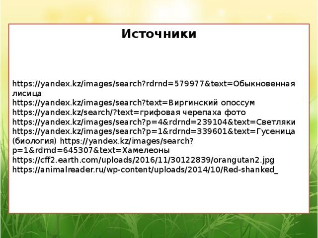 Источники https://yandex.kz/images/search?rdrnd=579977&text=Обыкновенная лисица https://yandex.kz/images/search?text=Виргинский опоссум https://yandex.kz/search/?text=грифовая черепаха фото https://yandex.kz/images/search?p=4&rdrnd=239104&text=Светляки https://yandex.kz/images/search?p=1&rdrnd=339601&text=Гусеница (биология) https://yandex.kz/images/search?p=1&rdrnd=645307&text=Хамелеоны https://cff2.earth.com/uploads/2016/11/30122839/orangutan2.jpg https://animalreader.ru/wp-content/uploads/2014/10/Red-shanked_