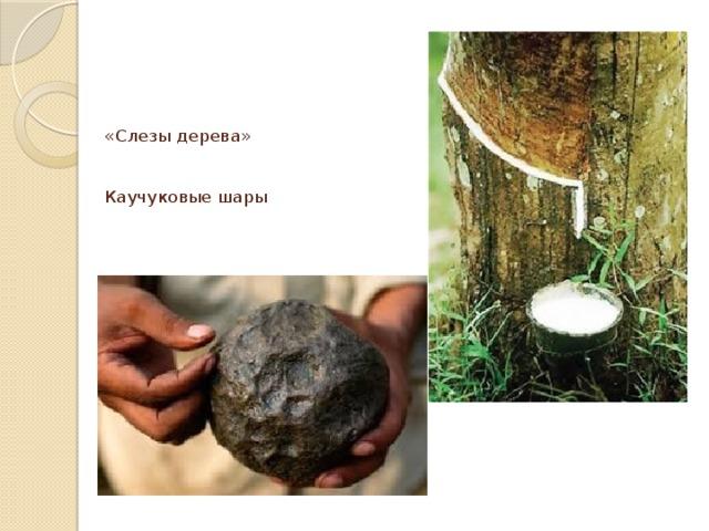 «Слезы дерева»    Каучуковые шары