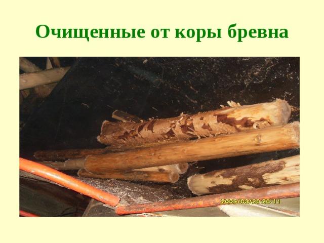 Очищенные от коры бревна