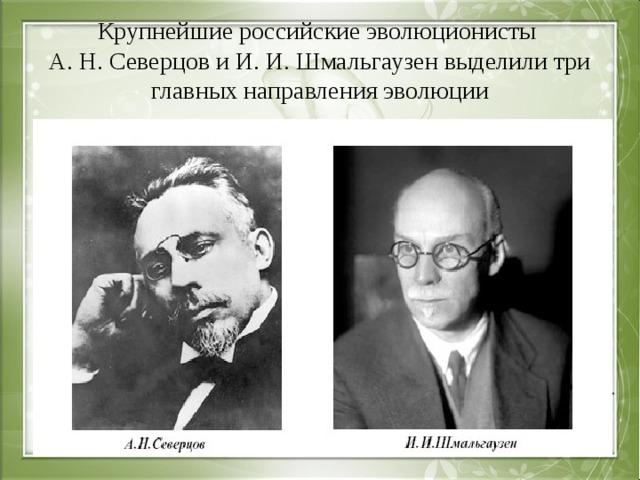 Крупнейшие российские эволюционисты  А. Н. Северцов и И. И. Шмальгаузен выделили три главных направления эволюции