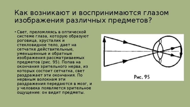 Как возникают и воспринимаются глазом изображения различных предметов?
