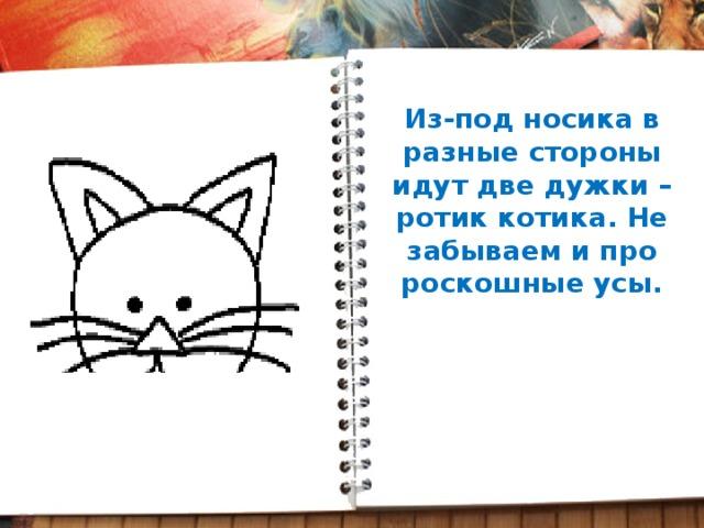 Из-под носика в разные стороны идут две дужки – ротик котика. Не забываем и про роскошные усы.