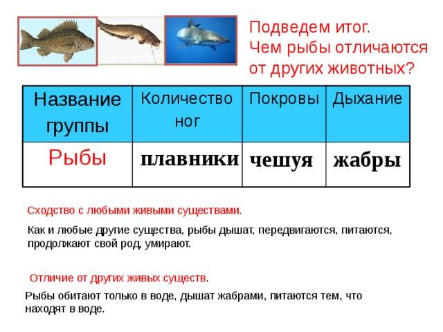 Подведем итог.  Чем рыбы отличаются  от других животных? Название группы Количество Рыбы ног Покровы Дыхание плавники чешуя жабры Сходство с любыми живыми существами. Как и любые другие существа, рыбы дышат, передвигаются, питаются, продолжают свой род, умирают. Отличие от других живых существ . Рыбы обитают только в воде, дышат жабрами, питаются тем, что находят в воде.
