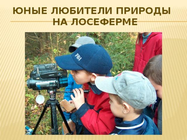 Юные любители природы  на лосеферме