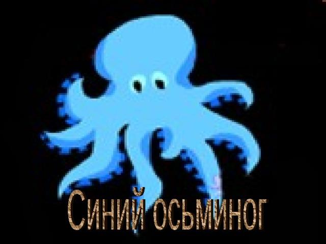 Синий осьминог