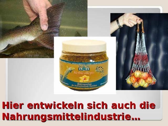 Hier entwickeln sich auch die Nahrungsmittelindustrie …