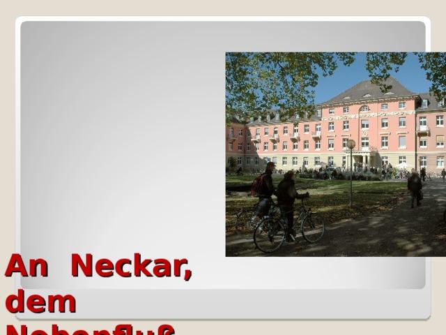 An Neckar,  dem  Nebenfluß  des Rheins,  befindet sich  die alte  Universitätstadt Heidelberg