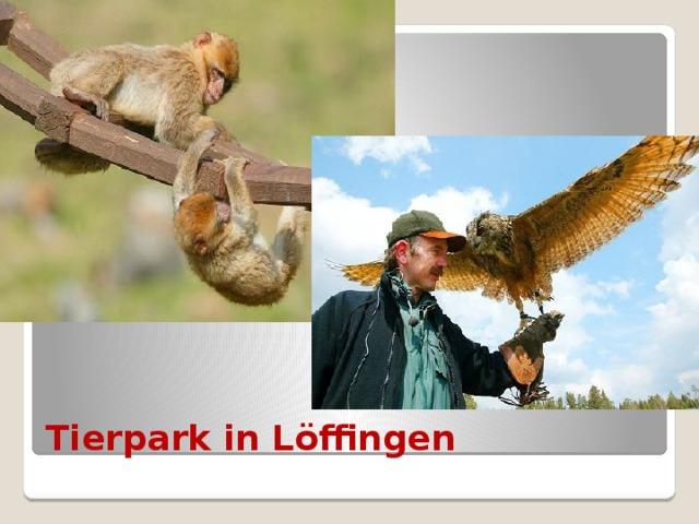 Tierpark in Löffingen
