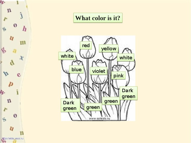 What color is it? red yellow white white blue violet pink Dark green green Dark green green
