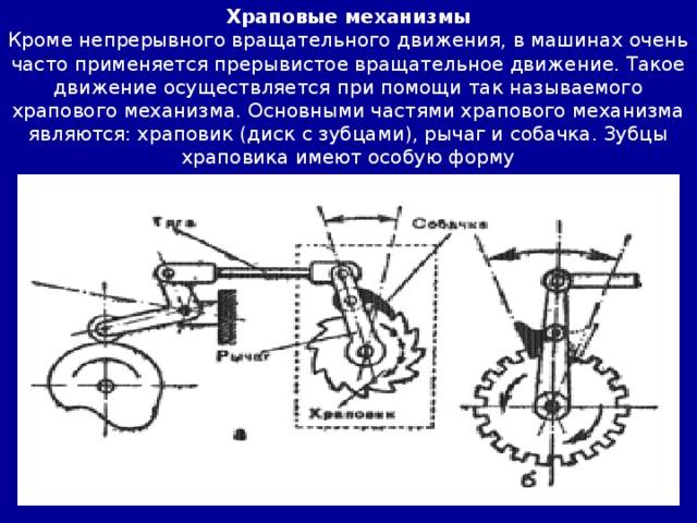 Храповые механизмы Кроме непрерывного вращательного движения, в машинах очень часто применяется прерывистое вращательное движение. Такое движение осуществляется при помощи так называемого храпового механизма. Основными частями храпового механизма являются: храповик (диск с зубцами), рычаг и собачка. Зубцы храповика имеют особую форму