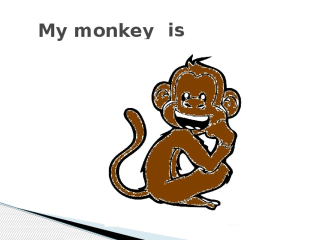 is My monkey