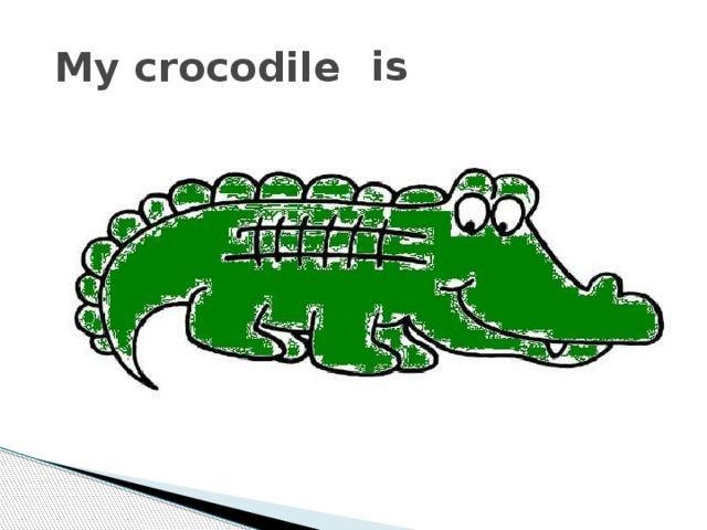 is My crocodile