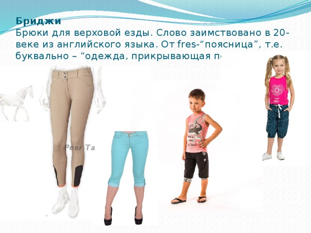 """Бриджи  Брюки для верховой езды. Слово заимствовано в 20-веке из английского языка. От fres-""""поясница"""", т.е. буквально – """"одежда, прикрывающая поясницу""""."""