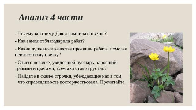 рассказ о неизвестном цветке картинки четырехместная кабина
