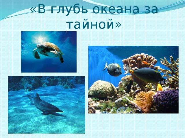 «В глубь океана за тайной»