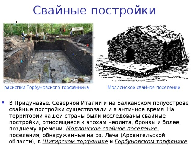 Свайные постройки Модлонское свайное поселение раскопки Горбуновского торфянника