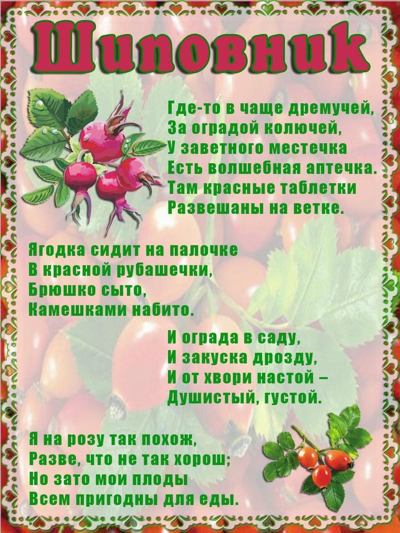 том, загадки о фруктах и ягодах с картинками фото самые длинные