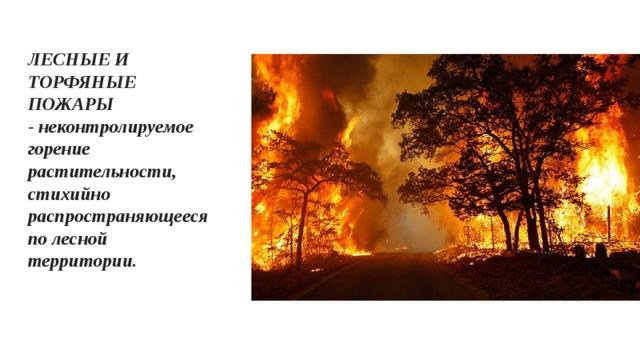 ЛЕСНЫЕ И ТОРФЯНЫЕ ПОЖАРЫ -неконтролируемое горение растительности, стихийно распространяющееся по лесной территории.