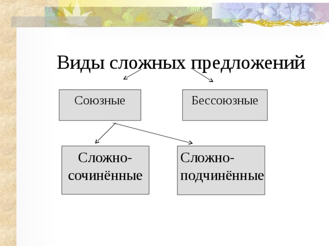Виды сложных предложений Союзные Сложно Бессоюзные Сложно- сочинённые Сложно- подчинённые