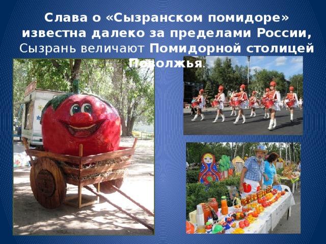 Слава о «Сызранском помидоре» известна далеко за пределами России, Сызрань величают Помидорной столицей Поволжья .