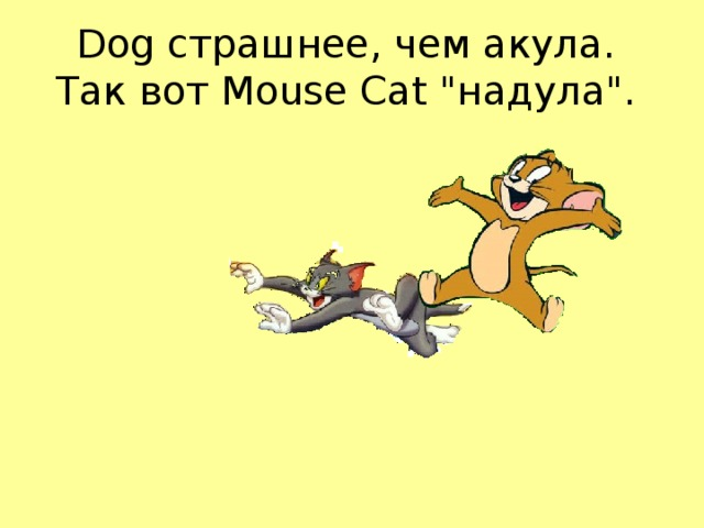 Dog страшнее, чем акула.  Так вот Mouse Cat