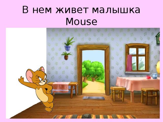 В нем живет малышка Mouse