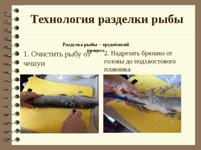 Технология разделки рыбы Разделка рыбы – трудоёмкий процесс  1. Очистить рыбу от чешуи 2. Надрезать брюшко от головы до подхвостового плавника