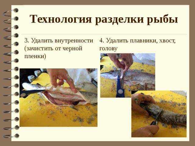 Технология разделки рыбы 4. Удалить плавники, хвост, голову 3. Удалить внутренности (зачистить от черной пленки)