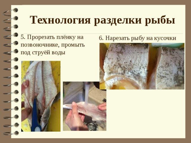 Технология разделки рыбы 6. Нарезать рыбу на кусочки 5. Прорезать плёнку на позвоночнике, промыть под струёй воды