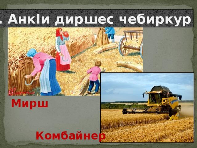 3. АнкIи диршес чебиркур Мирш Комбайнер