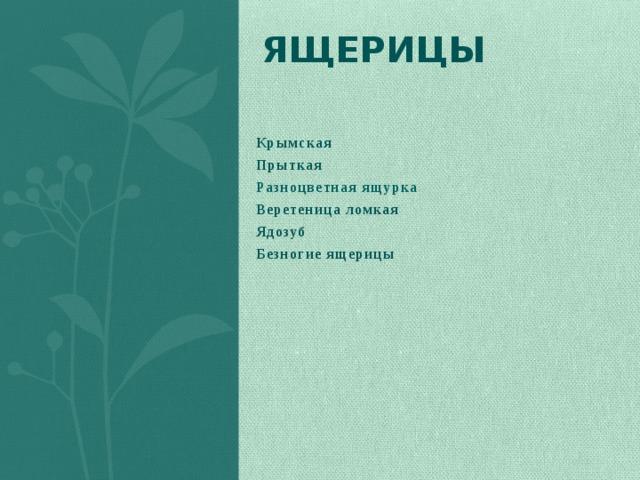ящерицы  Крымская Прыткая Разноцветная ящурка Веретеница ломкая Ядозуб Безногие ящерицы