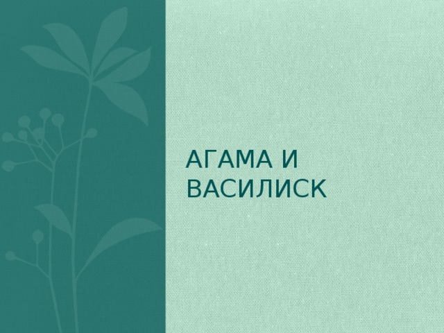 Агама и Василиск
