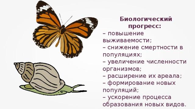 Биологический прогресс: –  повышение выживаемости; – снижение смертности в популяциях; – увеличение численности организмов; – расширение их ареала; – формирование новых популяций; – ускорение процесса образования новых видов.