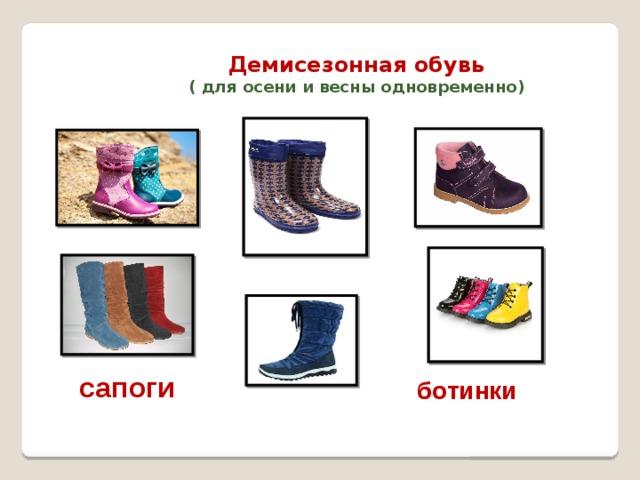 Демисезонная обувь  ( для осени и весны одновременно) сапоги ботинки
