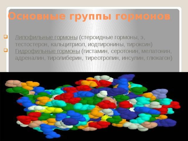Основные группы гормонов