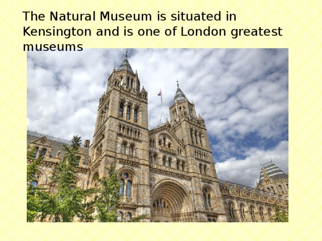 The Natural Museum is situated in Kensington and is one of London greatest museums