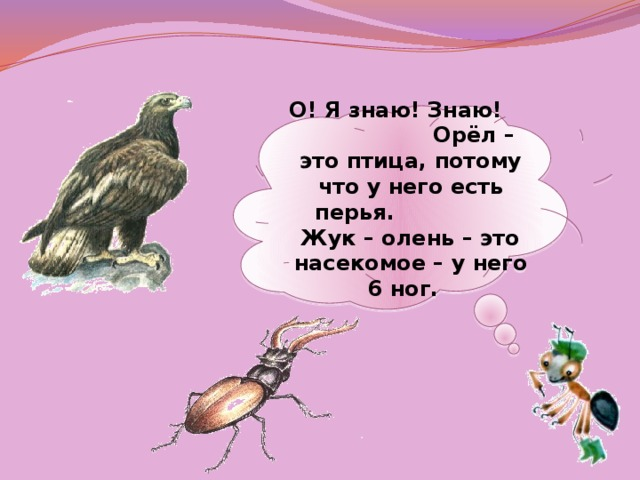 О! Я знаю! Знаю! Орёл – это птица, потому что у него есть перья. Жук – олень – это насекомое – у него 6 ног.