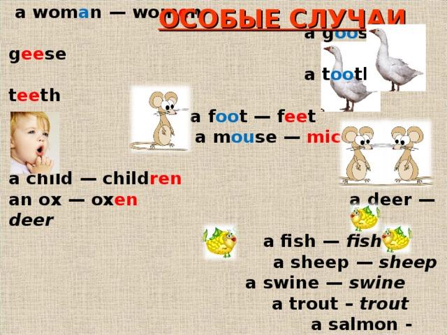 a m a n — m e n  a wom a n — wom e n    a g oo se — g ee se  a t oo th — t ee th    a f oo t — f ee t  a m ou se — mice  a child — child ren an ox — ox en     a deer — deer     a fish — fish    a sheep — sheep    a swine — swine       a trout – trout    a salmon - salmon ОСОБЫЕ СЛУЧАИ