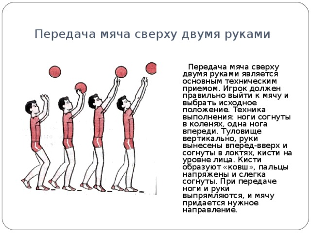 Передача мяча сверху двумя руками  Передача мяча сверху двумя руками является основным техническим приемом. Игрок должен правильно выйти к мячу и выбрать исходное положение. Техника выполнения: ноги согнуты в коленях, одна нога впереди. Туловище вертикально, руки вынесены вперед-вверх и согнуты в локтях, кисти на уровне лица. Кисти образуют «ковш», пальцы напряжены и слегка согнуты. При передаче ноги и руки выпрямляются, и мячу придается нужное направление.