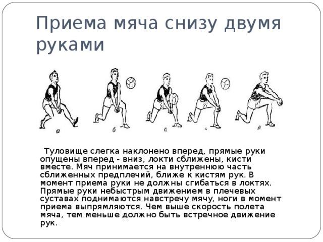Приема мяча снизу двумя руками  Туловище слегка наклонено вперед, прямые руки опущены вперед - вниз, локти сближены, кисти вместе. Мяч принимается на внутреннюю часть сближенных предплечий, ближе к кистям рук. В момент приема руки не должны сгибаться в локтях. Прямые руки небыстрым движением в плечевых суставах поднимаются навстречу мячу, ноги в момент приема выпрямляются. Чем выше скорость полета мяча, тем меньше должно быть встречное движение рук.