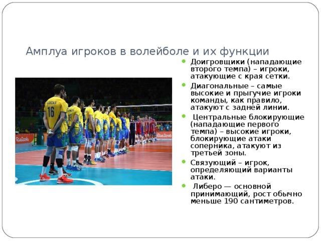 Амплуа игроков в волейболе и их функции