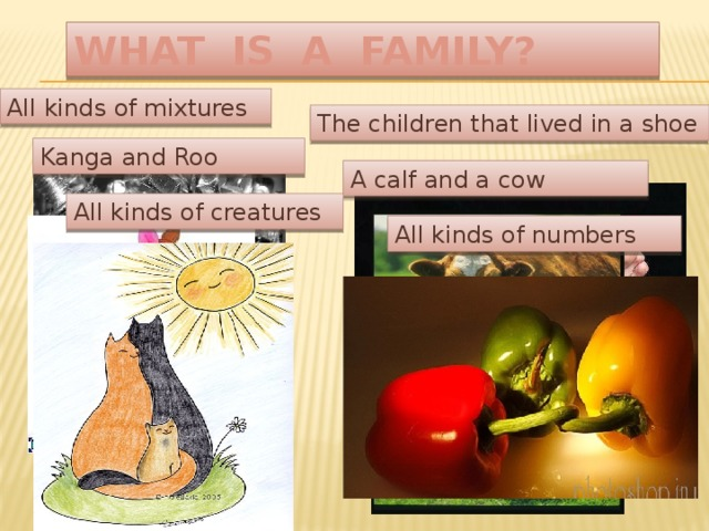 WHAT IS A FAMILY? All kinds of mixtures The children that lived in a shoe Kanga and Roo A calf and a cow All kinds of creatures All kinds of numbers
