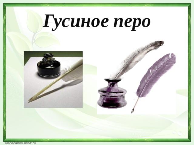 Гусиное перо