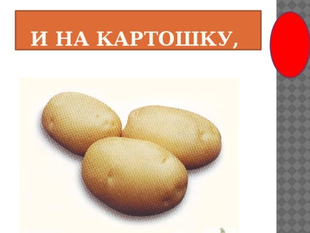 и на картошку,