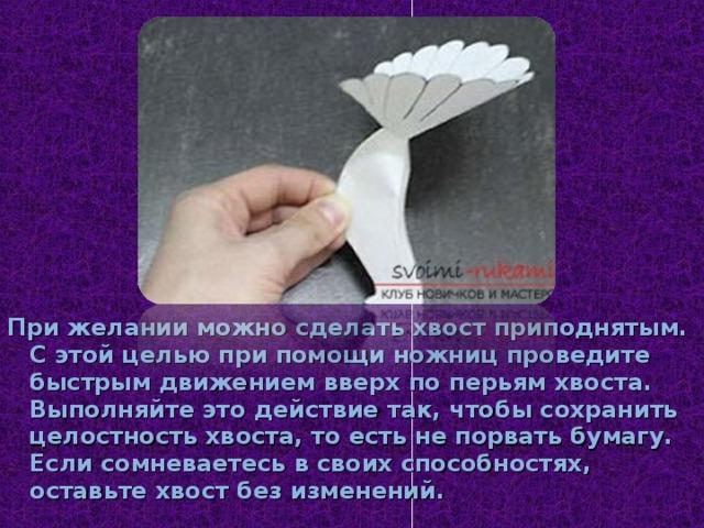 При желании можно сделать хвост приподнятым. С этой целью при помощи ножниц проведите быстрым движением вверх по перьям хвоста. Выполняйте это действие так, чтобы сохранить целостность хвоста, то есть не порвать бумагу. Если сомневаетесь в своих способностях, оставьте хвост без изменений.
