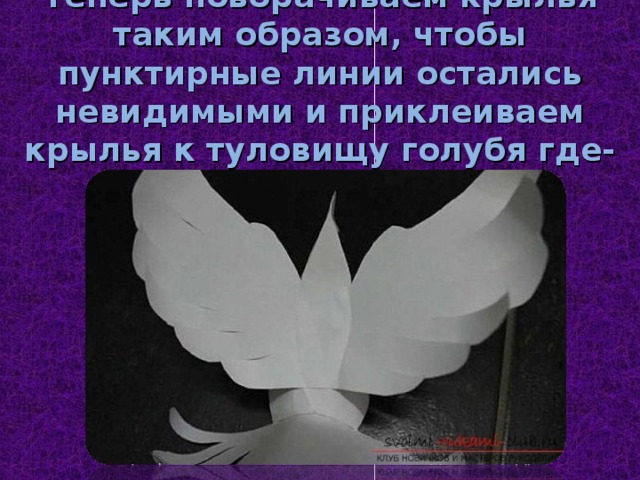 Теперь поворачиваем крылья таким образом, чтобы пунктирные линии остались невидимыми и приклеиваем крылья к туловищу голубя где-то посередине.