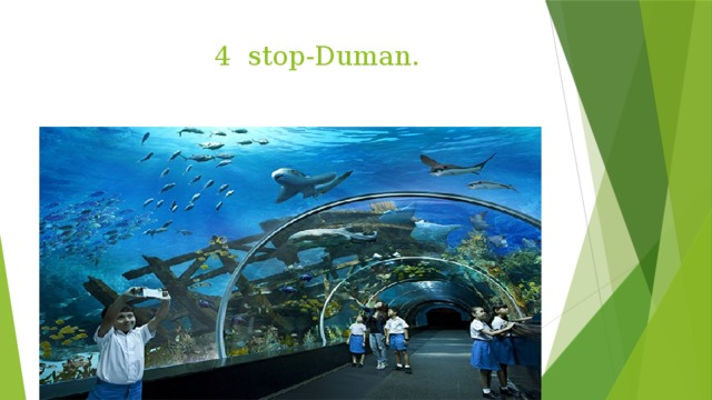 4 stop-Duman.