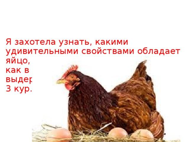 Я захотела узнать, какими удивительными свойствами обладает яйцо, может оно и не такое прочное, как в сказке? Я узнала, что яйцо выдерживает вес 5 кг. 300 гр. = вес у 3 кур…